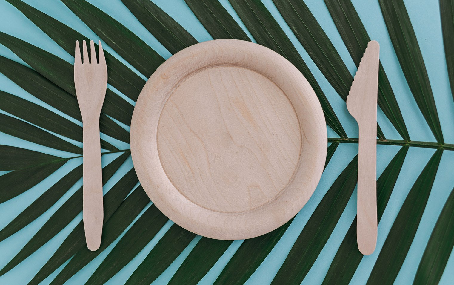 Disposable cutlery and plate made of bamboo